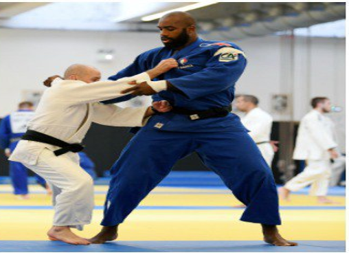 (image originale: http://la1ere.francetvinfo.fr/mondiaux-judo-budapest-teddy-riner-emilie-andeol-deux-medaille-venir-507027.html)
